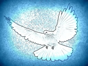 and the Holy Spirit descended upon him in bodily form like a dove